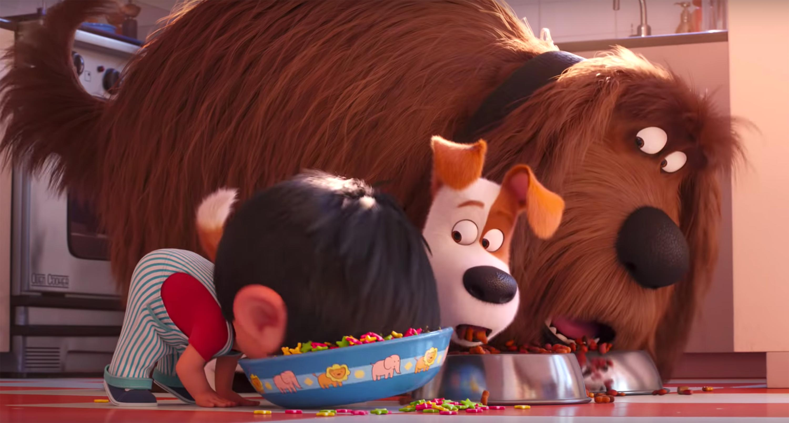 The Secret Life Of Pets 2 Review A Silly And Sweet Sequel Indiewire