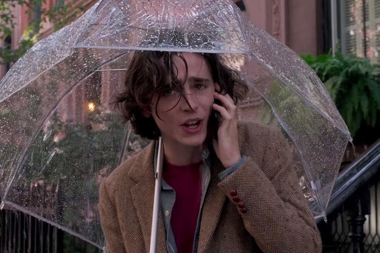 'A Rainy Day in New York' First Reactions: Woody Allen's Timothée Chalamet Film Surfaces Abroad