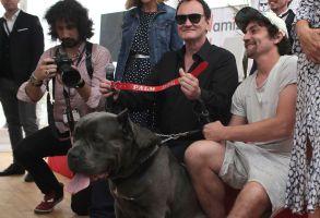 Tarantino at Palm Dog photo call
