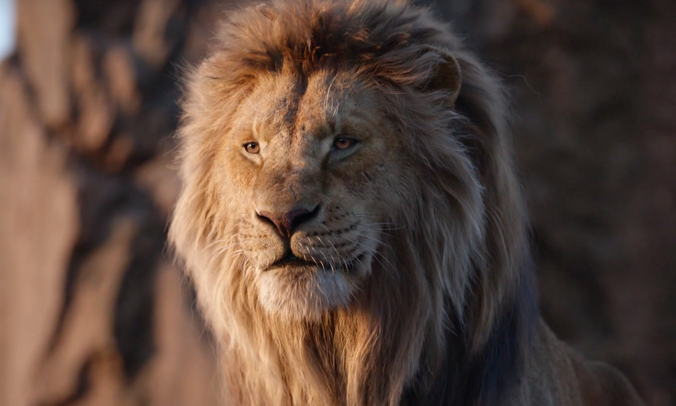 The Lion King Review Disney S Photorealistic Remake Is A Disaster Indiewire
