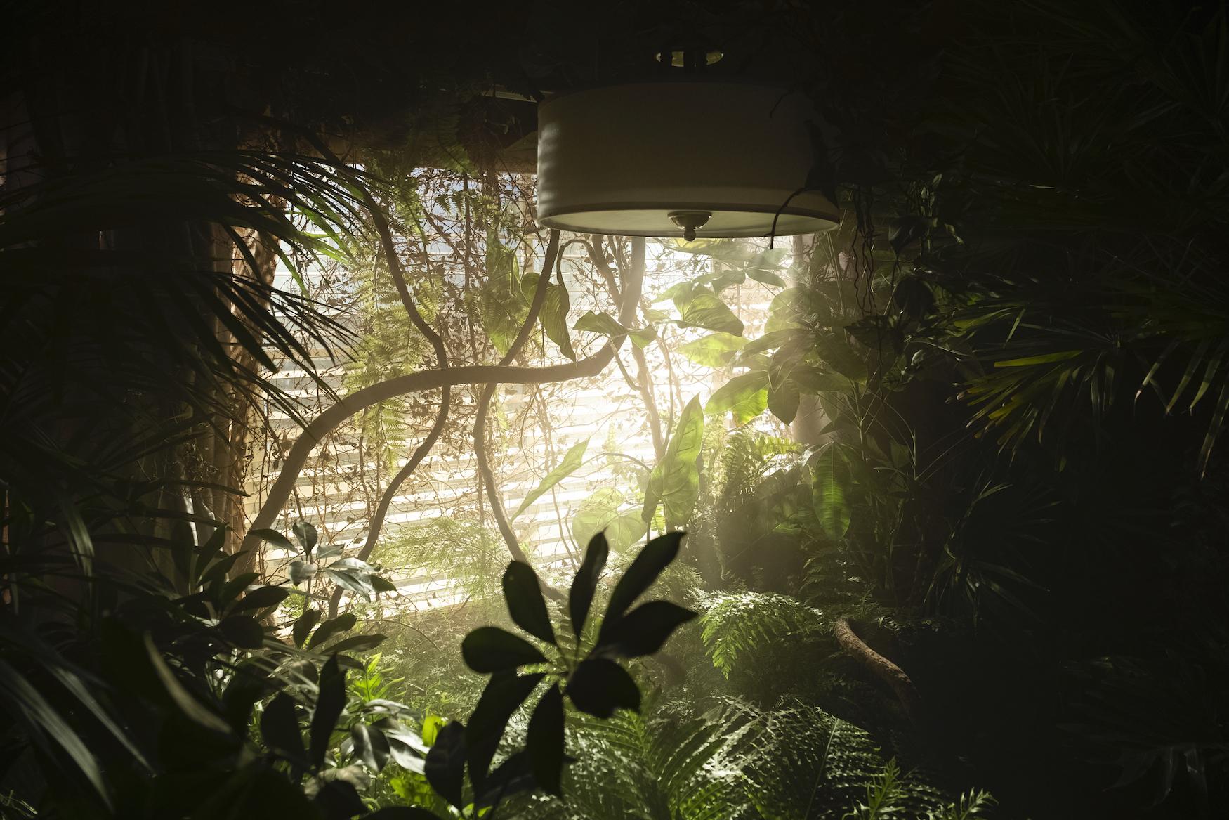 Room 104 Season 3 Forest