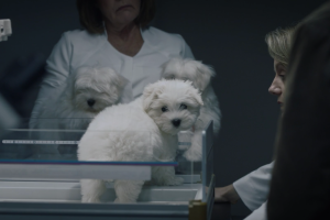 Why Does Damon Lindelof Hate Dogs?