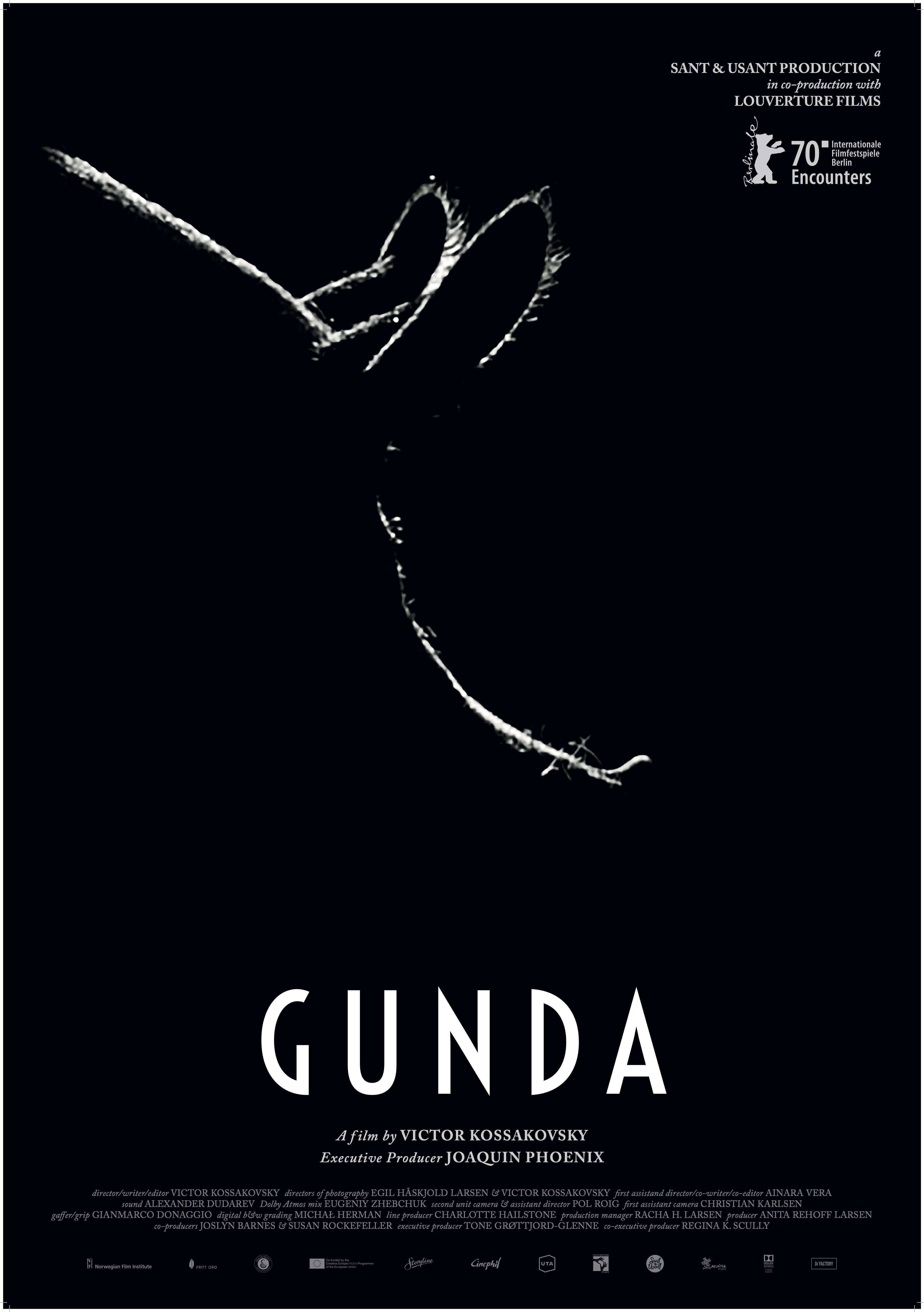 """""""Gunda"""""""
