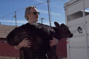Joaquin Phoenix Rescued a Cow and Her Newborn Calf From an LA Slaughterhouse – Watch