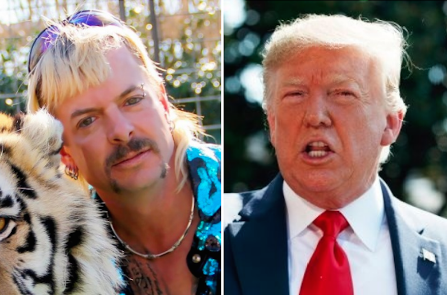 Trevor Noah Why Tiger King Joe Exotic Is Exactly Like Trump Indiewire Joe exotic (libertarian party) ran for election for governor of oklahoma. tiger king joe exotic