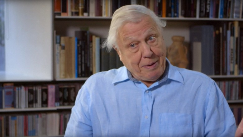 DIVING DEEP: THE LIFE AND TIMES OF MIKE DEGRUY, British broadcaster and naturalist David Attenborough, 2019. © Adventure Entertainment / courtesy Everett Collection
