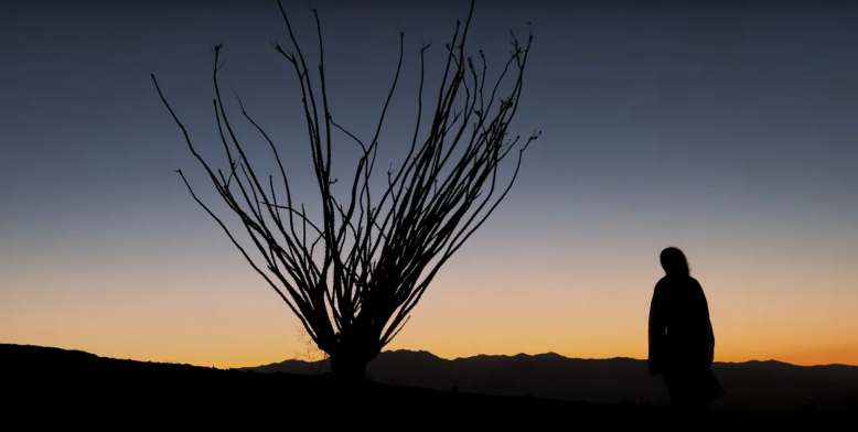A short film made by Emmanuel Lubezki on the iPhone 12 Pro