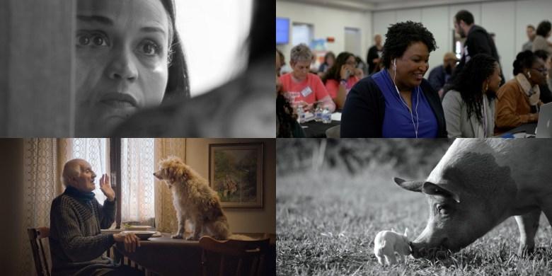 "Best Documentaries 2020 ""Time,"" ""All In,"" ""The Truffle Hunters,"" ""Gunda"""