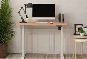 Best Standing Desks to Buy