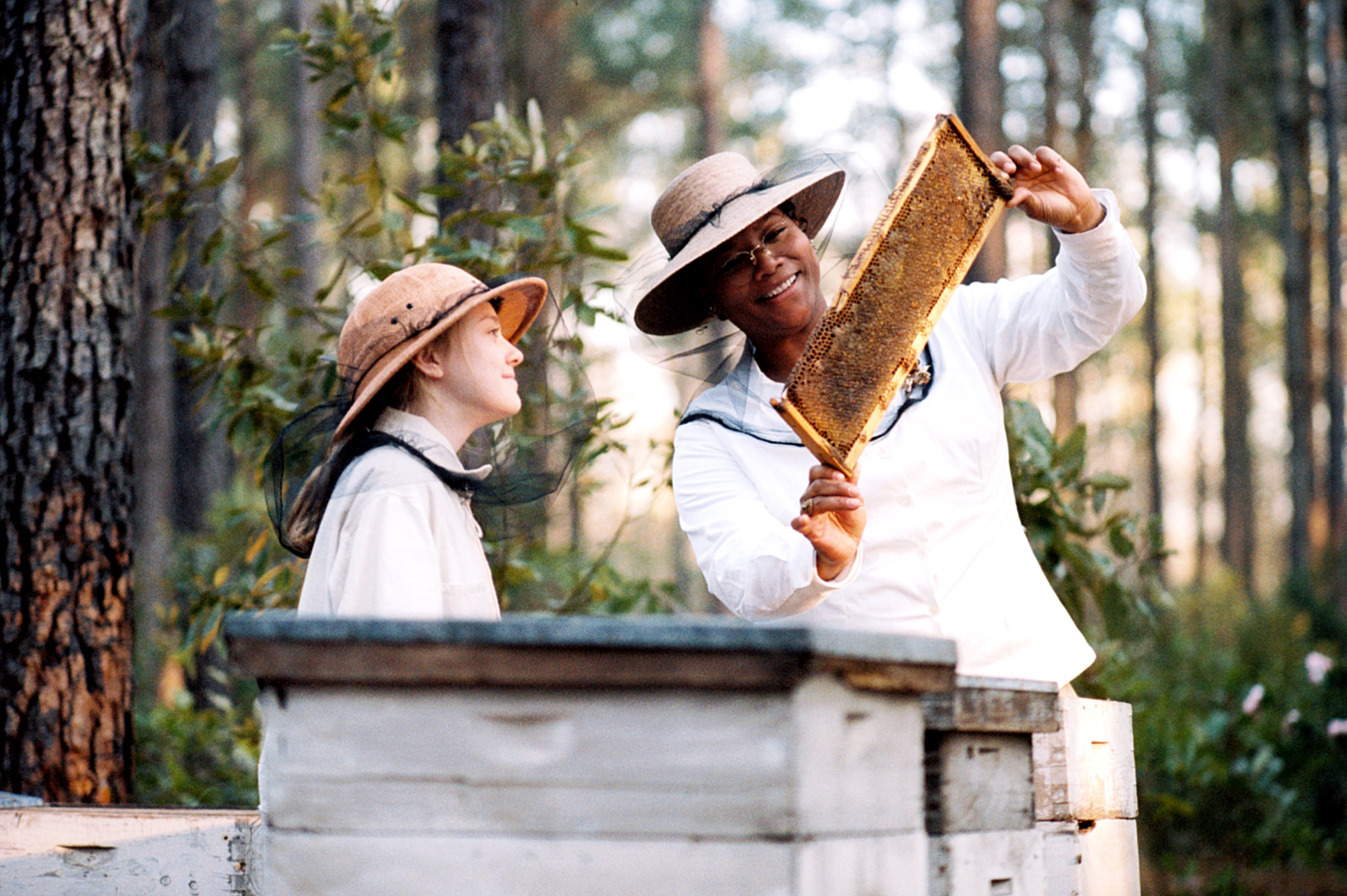 THE SECRET LIFE OF BEES, from left: Dakota Fanning, Queen Latifah, 2008, TM and ©Copyright Twentieth Century Fox. All Rights Reserved./Courtesy Everett Collection