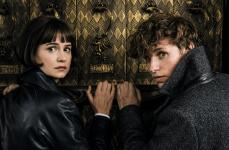 """Katherine Waterston, Eddie Redmayne in """"Fantastic Beasts: The Crimes of Grindelwald"""""""
